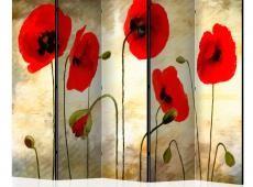 Paraván - Golden Field of Poppies II [Room Dividers]